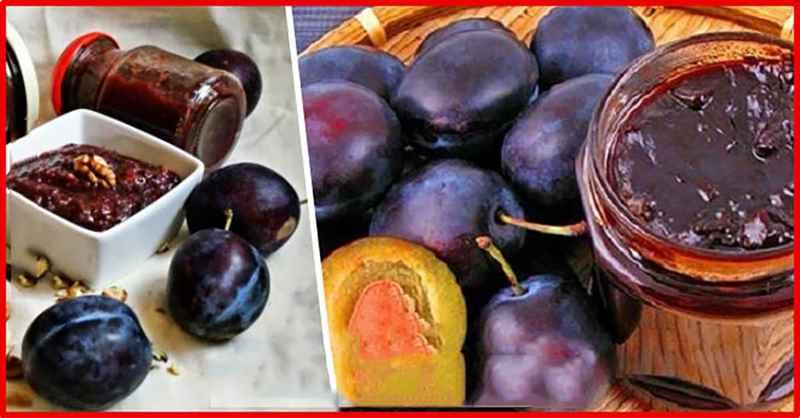 Лучшие рецепты варенья из слив с грецкими орехами на зиму в домашних условиях, хранение