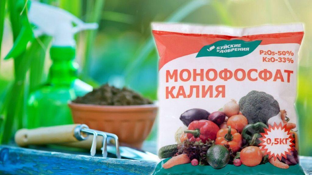 Все что вам нужно знать о калийных удобрениях, чтобы получить рекордный урожай овощей и фруктов на даче
