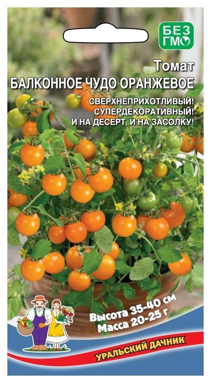 """Томат """"оранжевое чудо"""" описание и характеристики сорта больших рыжих помидоров русский фермер"""
