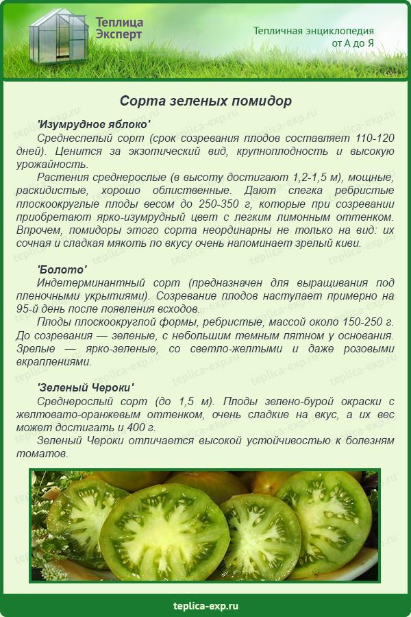 Томат киви: зеленое чудо, характеристика и описание сорта с фото