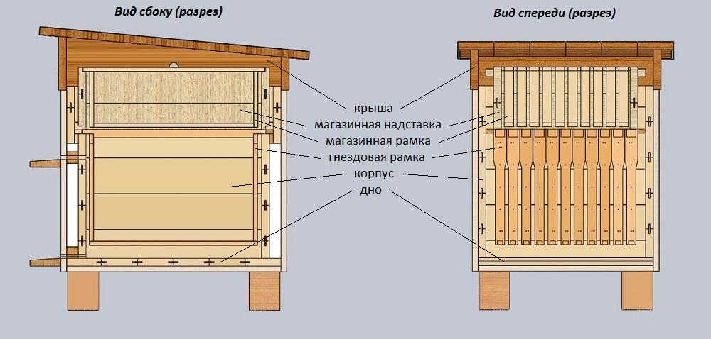 Ульи для пчел: выбор вида и инструкция по изготовлению своими руками
