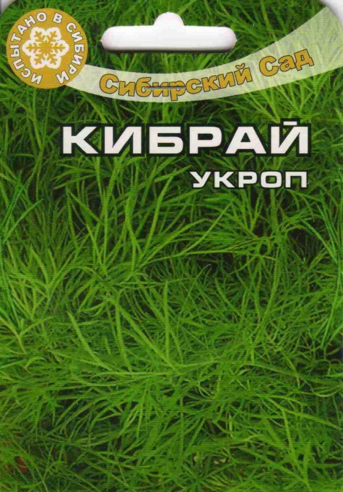 Укроп кибрай: описание сорта, агротехника культуры | дизайн интерьера