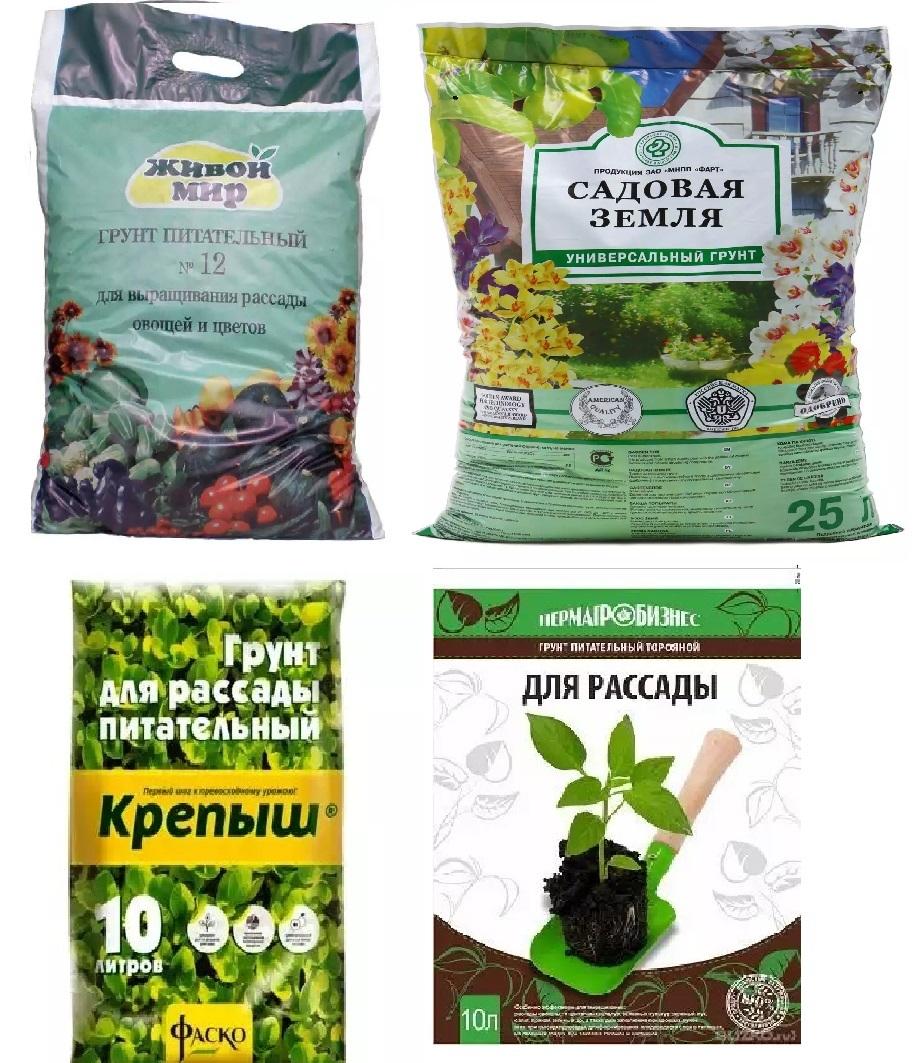 Состав почвы для садовой голубики и как приготовить грунт своими руками