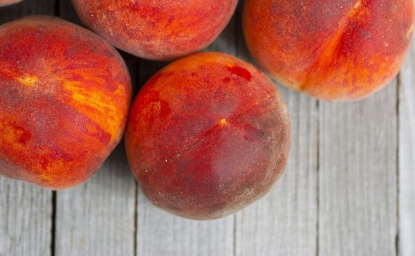 Характеристики и описание персика сорта Редхейвен, посадка и уход