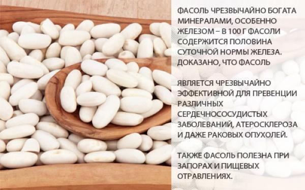 Фасоль польза и вред, состав, калорийность, виды