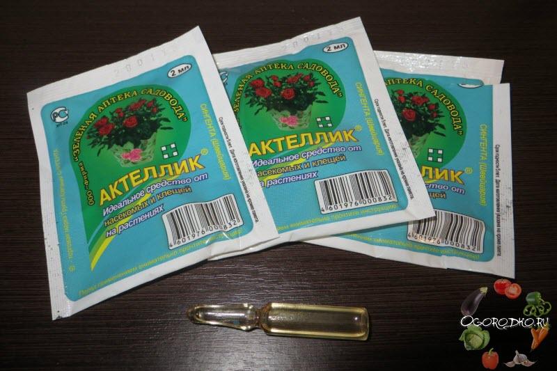 Актеллик: инструкция по применению для растений, отзывы, от каких вредителей проводится обработка инсектицидом