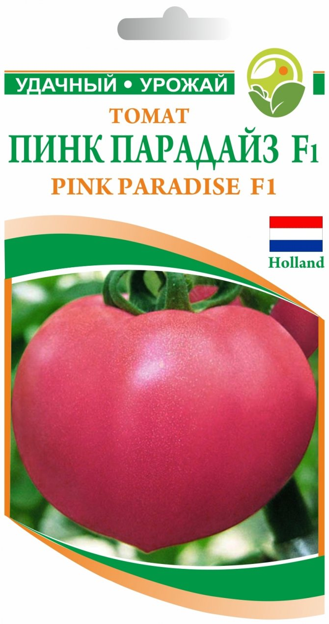 Пинк леди f1: полное описание и рекомендации по уходу за крупноплодным томатом