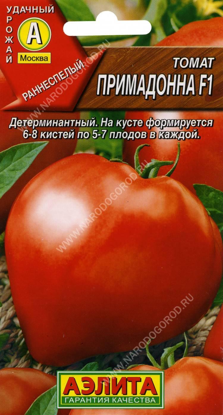 Описание томата соседская зависть f1 и агротехника выращивания растения