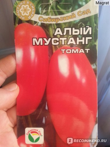 Томат «алый мустанг»: фото и урожайность