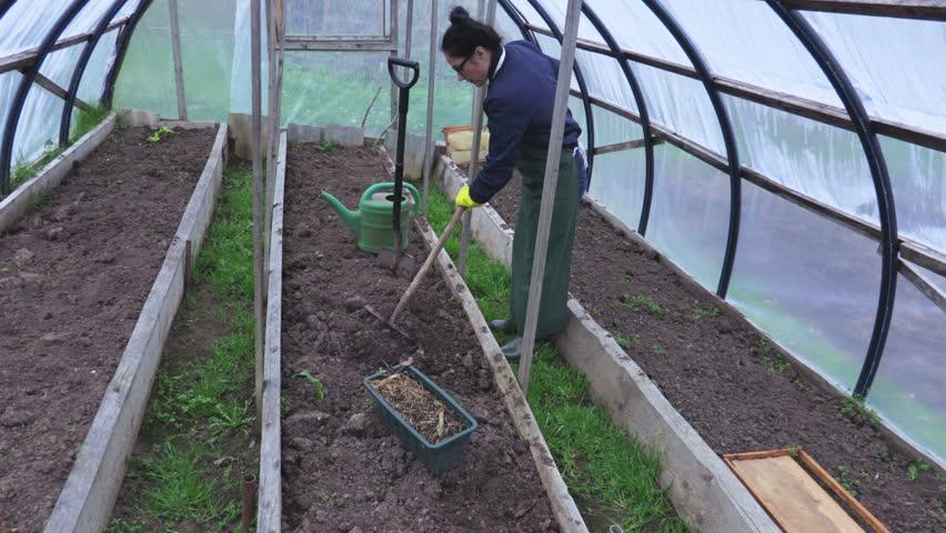 Весенняя подготовка грунта в теплице перед посадкой огурцов