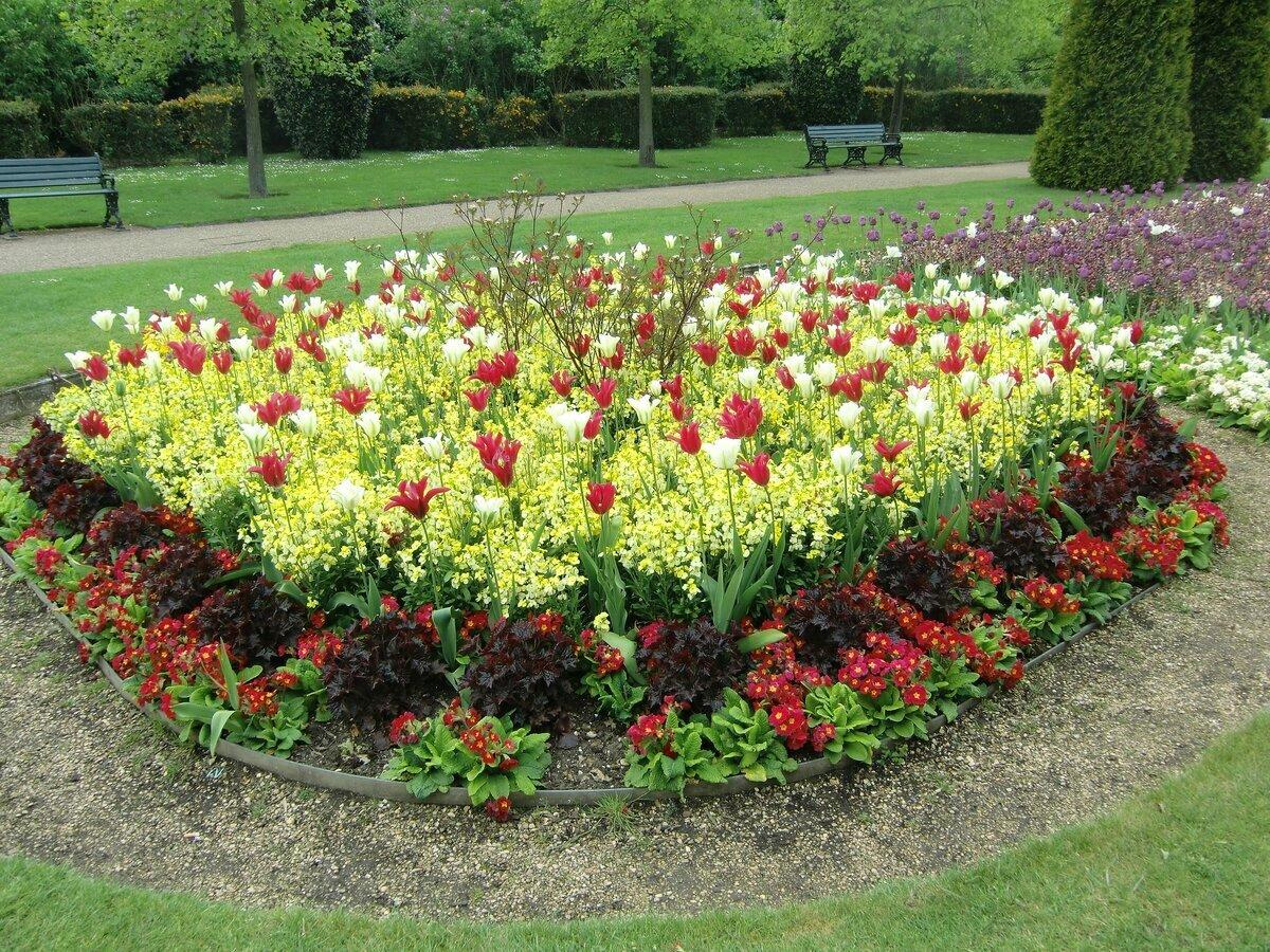 Шедевр прямо в саду или как красиво посадить тюльпаны