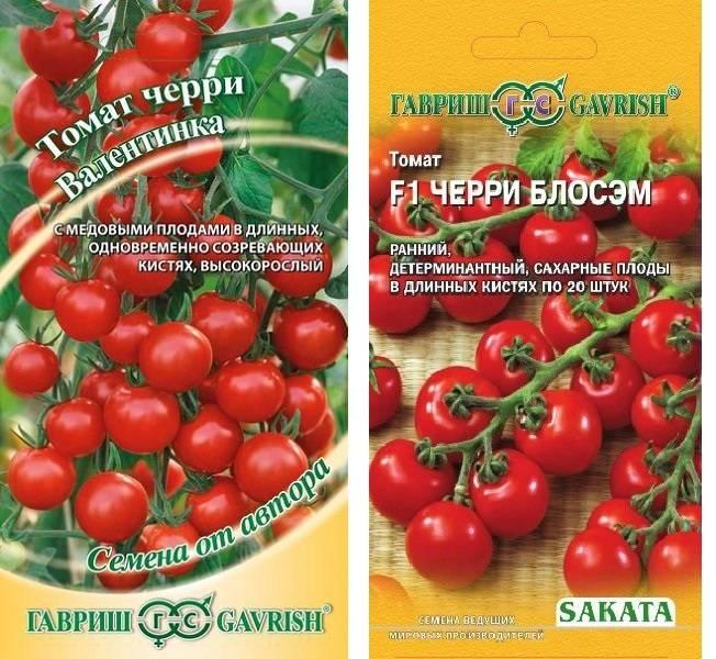 Томат «черри лиза»: описание сорта и особенности выращивания маленького помидора русский фермер