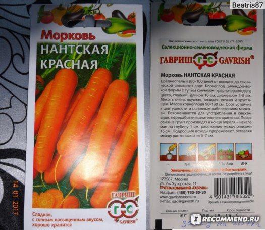 Морковь дордонь f1: характеристика и описание сорта, фото, посадка и уход