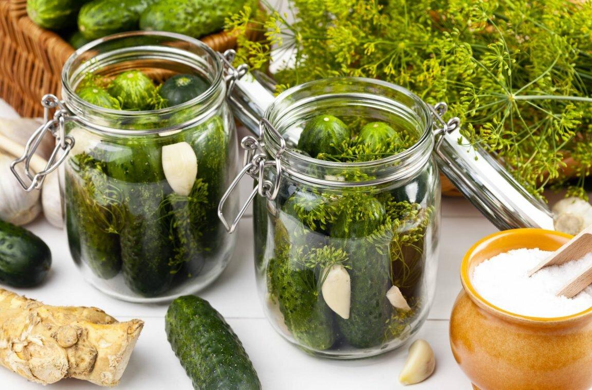 Засолка огурцов в ведре на зиму холодным способом: лучшие рецепты соленых огурчиков, рекомендации по хранению закусок холодного посола