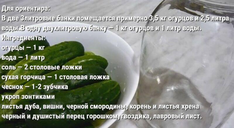 Огурцы соленые в банках на зиму холодным способом: рецепты