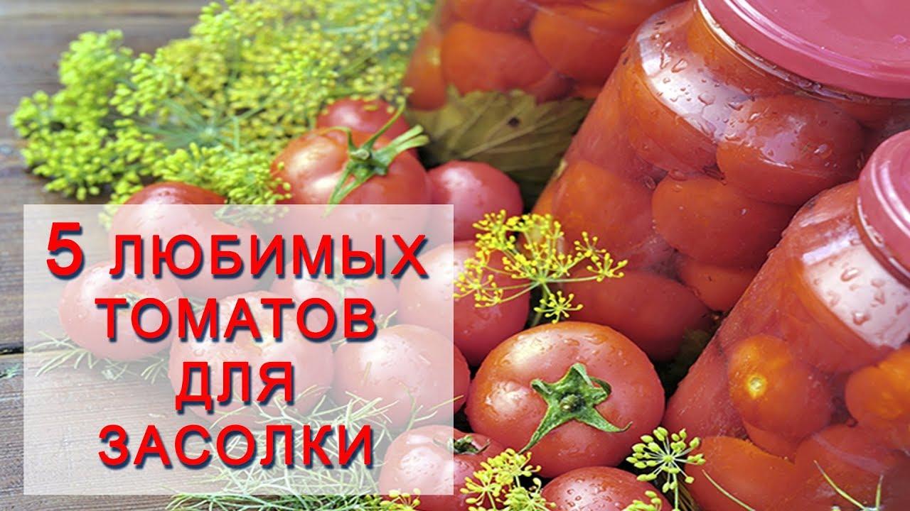 Лучшие сорта помидоров для засолки и консервации с фото