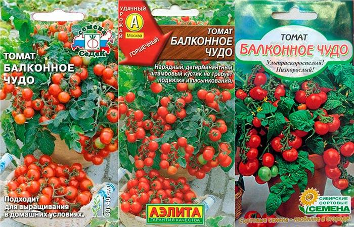 Томат балконное чудо: отзывы, фото, урожайность, описание и характеристика   tomatland.ru