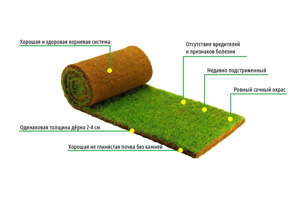 Все о газоне- искусственном. где применять, плюсы и минусы. как укладывать