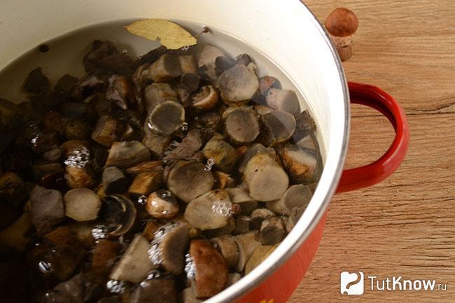 Как засолить и замариновать подосиновики горячим и холодным способом на зиму, рецепты приготовления. секреты заготовки и приготовления подосиновиков