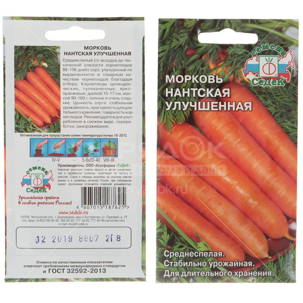 Описание и характеристики урожайной и высоколежкой моркови голландской селекции