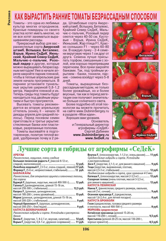 Как вырастить помидоры (томаты) безрассадным способом в открытом грунте