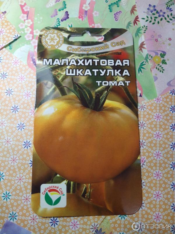 Зеленые помидоры «малахитовая шкатулка»: неповторимый фруктовый вкус и необычная окраска
