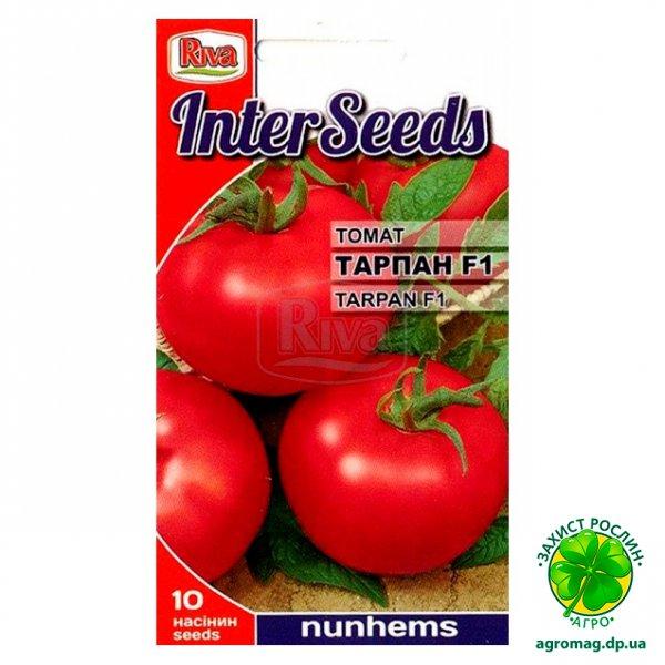 Томат «тарпан»: описание и характеристика, выращивание, фото