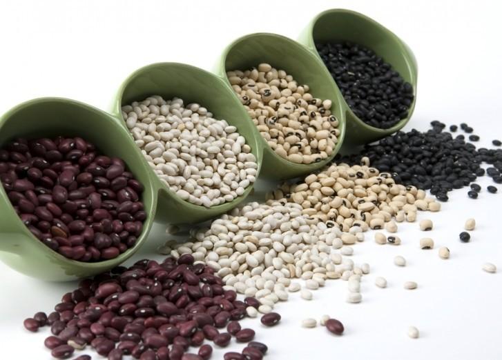 Проращивание фасоли для еды и ее полезные свойства для организма