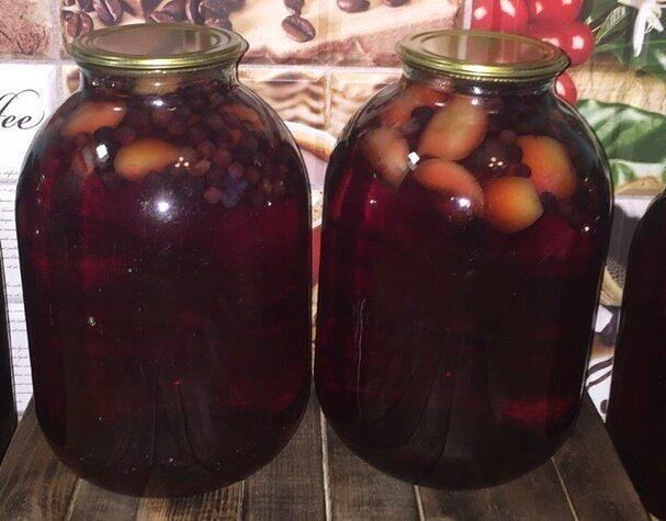 ᐉ компот из черноплодной рябины на зиму, компот из красной рябины на зиму, рецепты со сливой, яблоками, видео - my-na-dache.ru