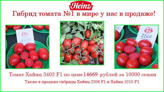 Томат хайнц характеристика и описание сорта, урожайность с фото и видео