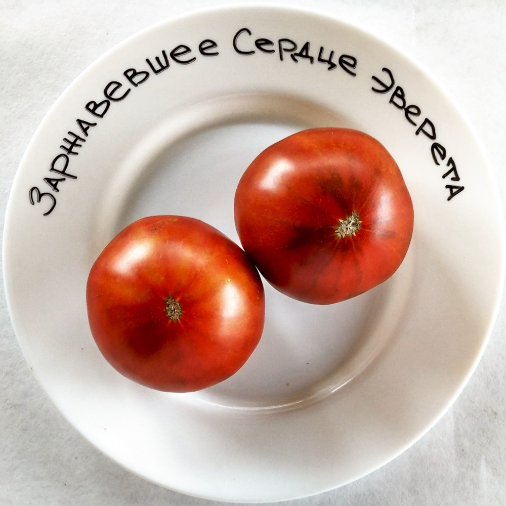 Характеристика и описание сорта томата оранжевое сердце, выращивание и уход