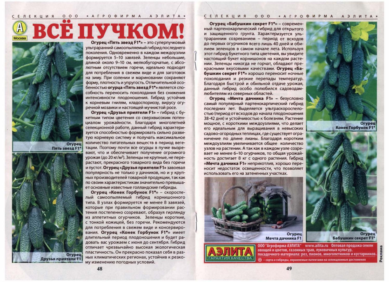 10 лучших сортов пучковых огурцов. лучшие сорта пучковых огурцов для открытого грунта и теплиц, и их выращивание | дачная жизнь