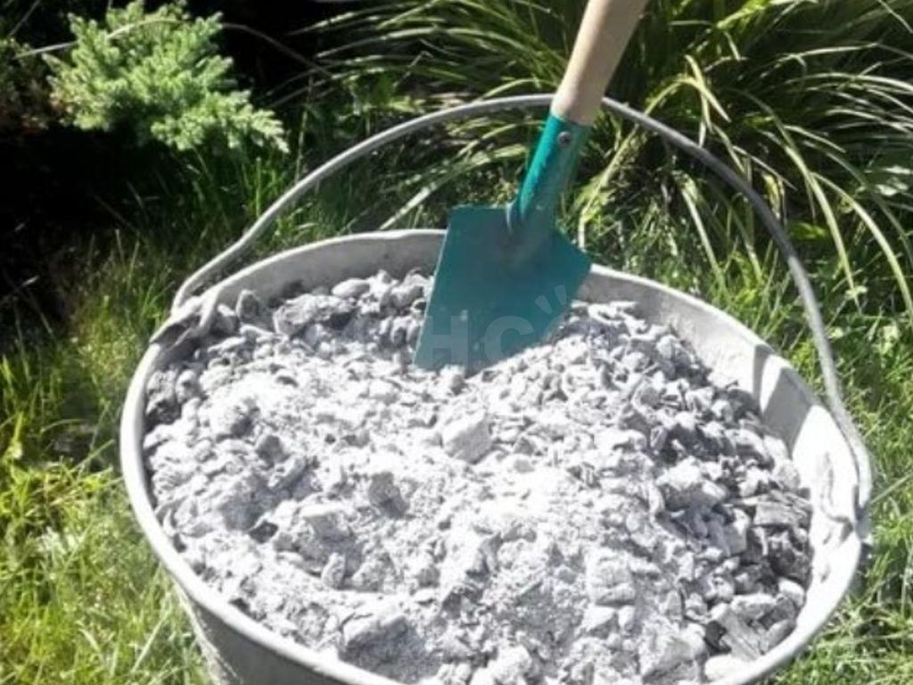 Зола – помощник садовода