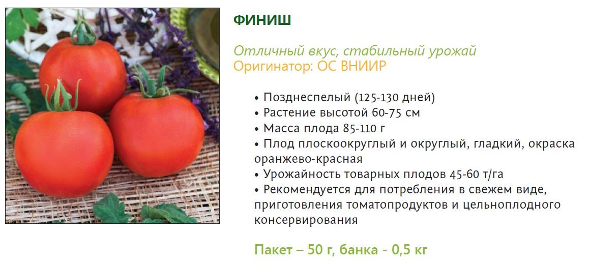 Описание детерминантного сорта томата Финиш и особенности выращивания растения