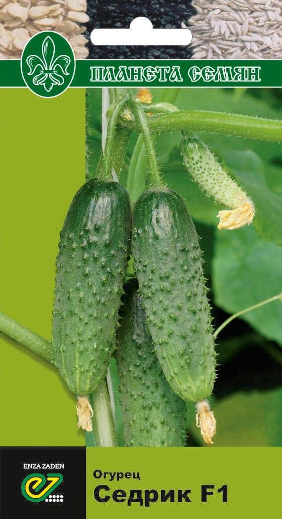 Характеристика огурцов сорта седрик - мыдачники