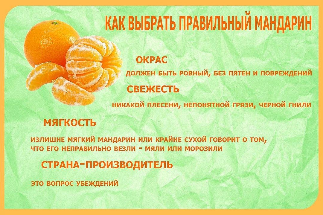 Ешьте на здоровье: в чем польза мандаринов для организма человека?