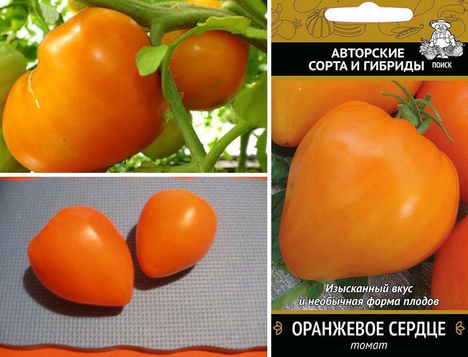 """Томат """"оранжевое сердце"""": характестика и описание сорта, отзывы, фото, урожайность"""