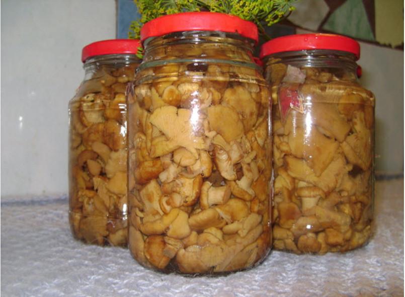 Лисички, маринованные на зиму: рецепты приготовления с фото пошагово