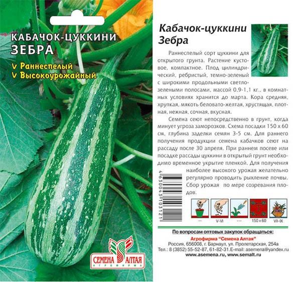 Кабачок цукини: лучшие сорта для открытого грунта с фото и описанием преимуществ + выращивание и уход
