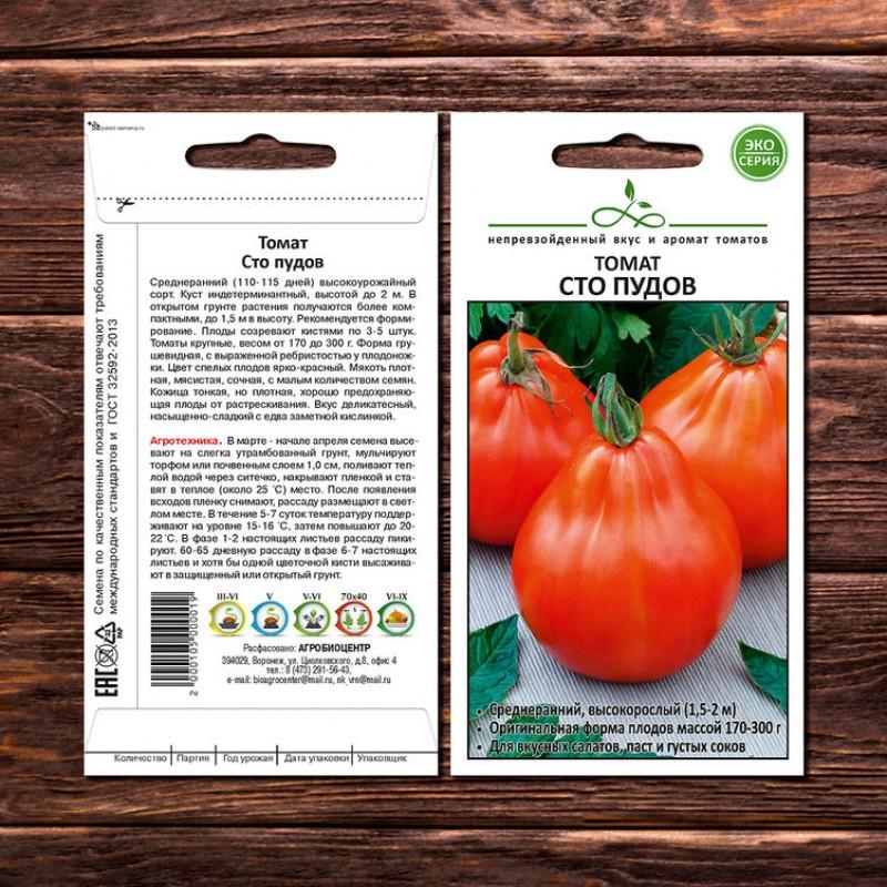 Характеристика томата шаста, выращивание и борьба с вредителями