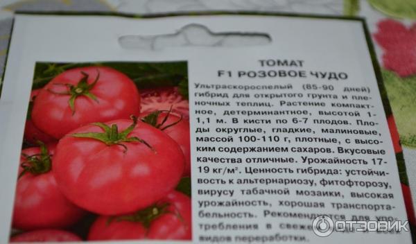 Томат белфорт f1: выращивание, топ отзывы, характеристика с фото