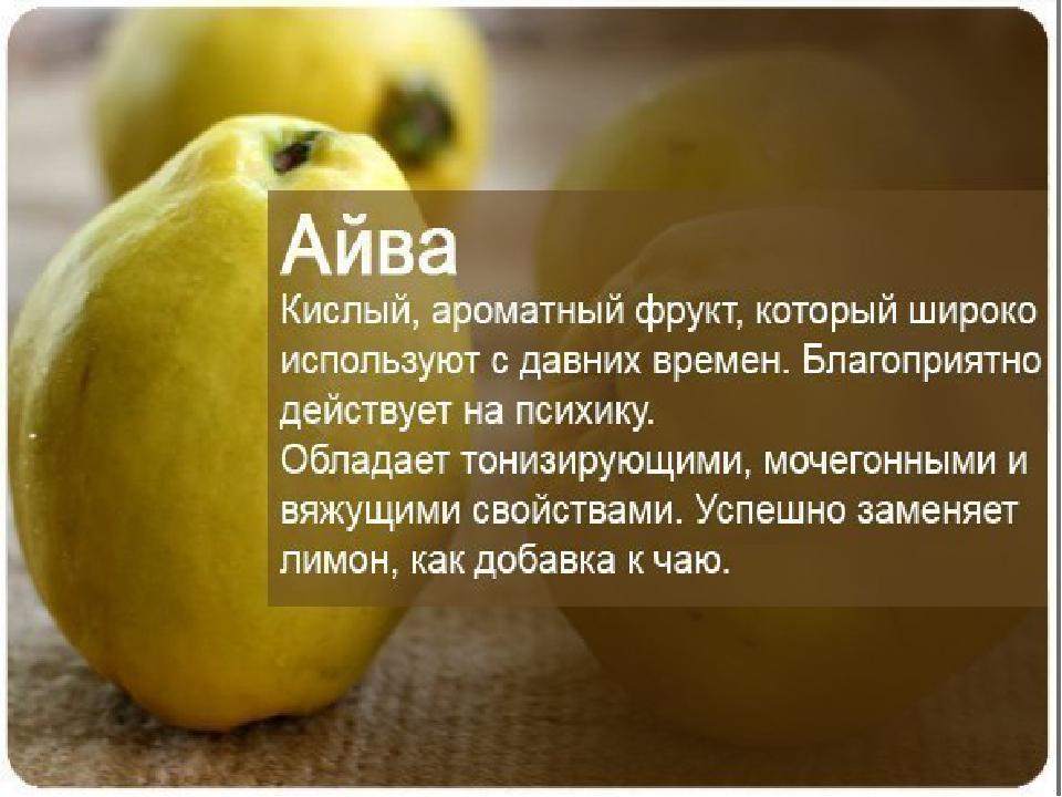 Апельсины: польза и вред для здоровья   хочу все знать – полезные и интересные статьи