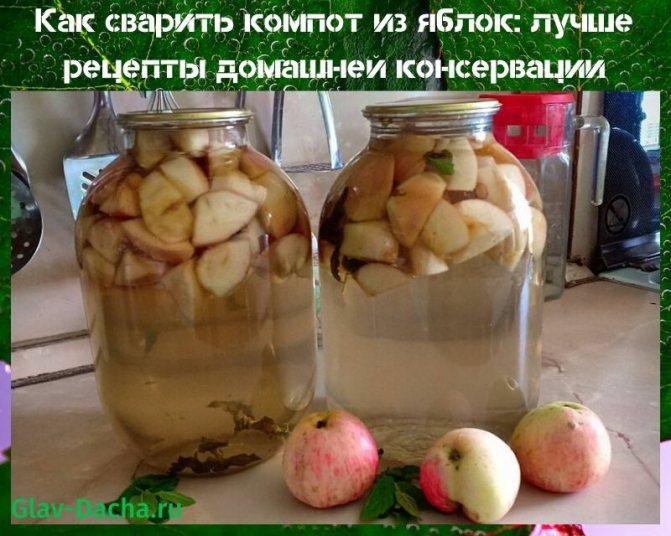Компот из яблок и груш на зиму — лучшие рецепты в банках без стерилизации