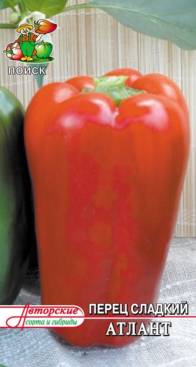 Характеристика крупноплодного болгарского перца сорта Атлант и его выращивание