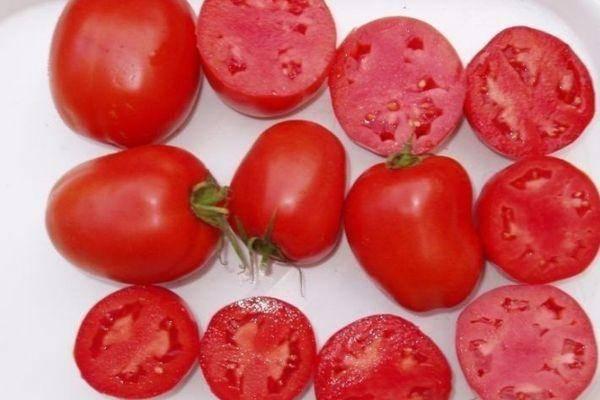 Томат огородник: отзывы, фото, урожайность | tomatland.ru