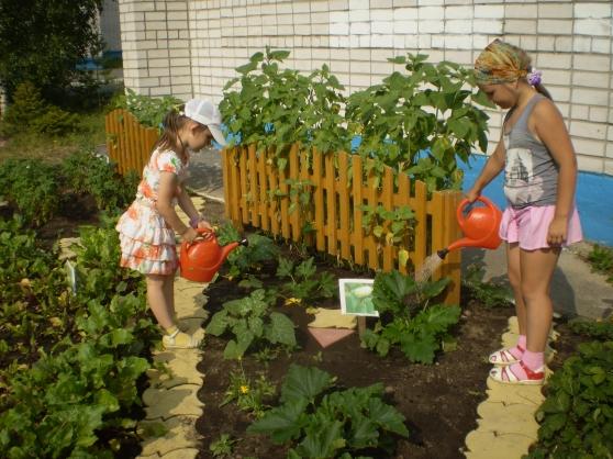 Планировка огорода: как правильно распланировать участок возле дома, посадка плодовых деревьев и кустарников  - 13 фото