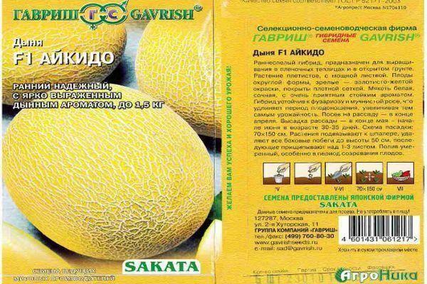Мини дыня, скрещенная с ананасом: сорт американо f1, фото и отзывы, а также особенности выращивания