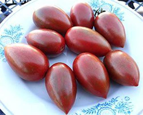 Описание томатов сорта монисто