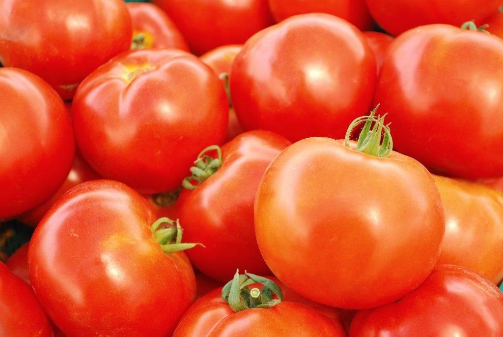 Характеристика томатов сорта бабушкин подарок - агро журнал pole39.ru