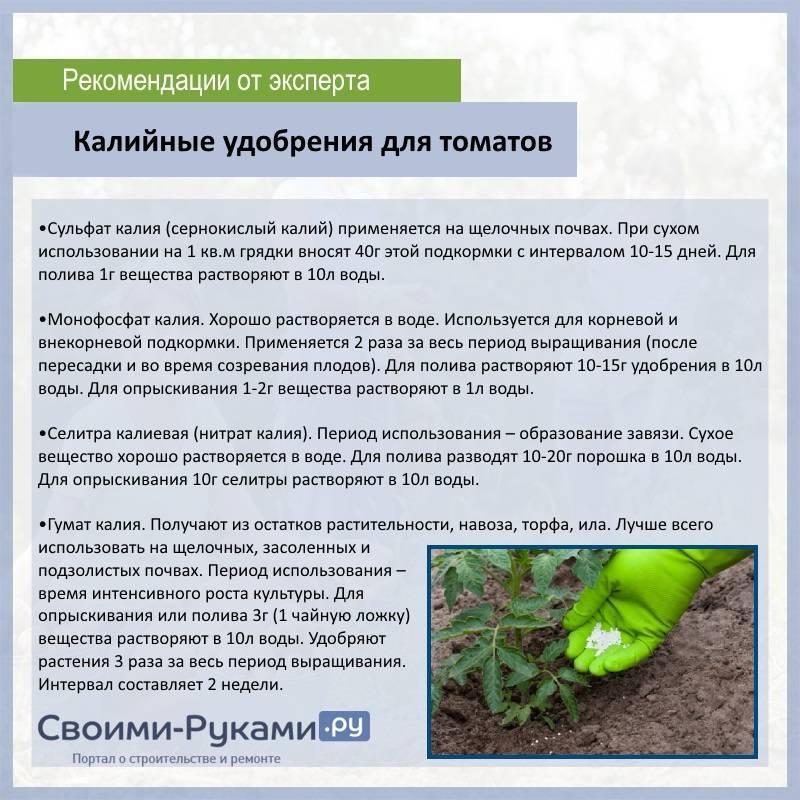 Удобрение монофосфат калия - инструкция по применению, как использовать для растений - почва.нет